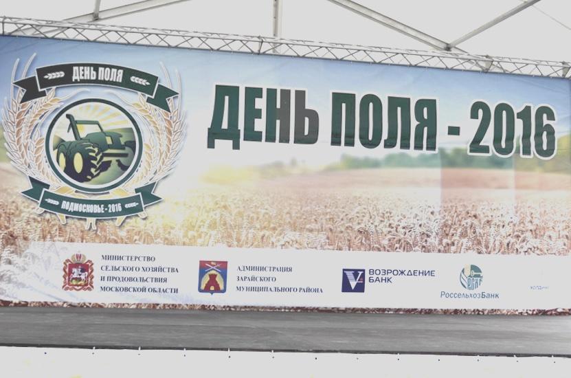 Фестиваль «День Поля — 2016»